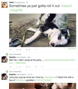 Hank on Twitter