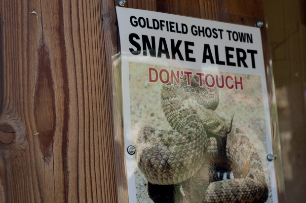 Goldfield Ghost Town Snake Alert | Apache Junction, AZ | Serindipitie.com